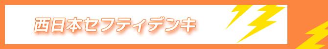 西日本セフティデンキ